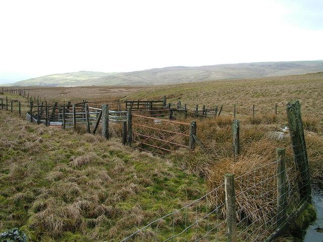 Sheepfold Foddering Hills