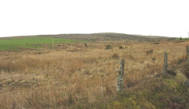 The north-western slope of Mynydd Cennin