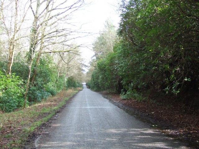 Lyburn Road