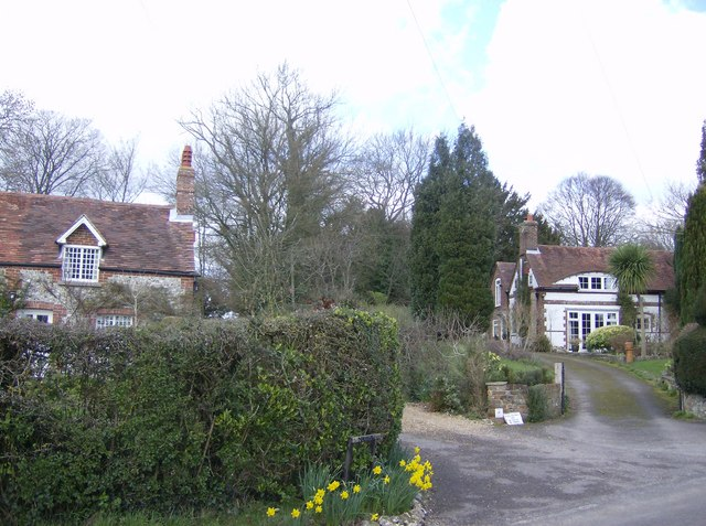 The first houses in Forestside