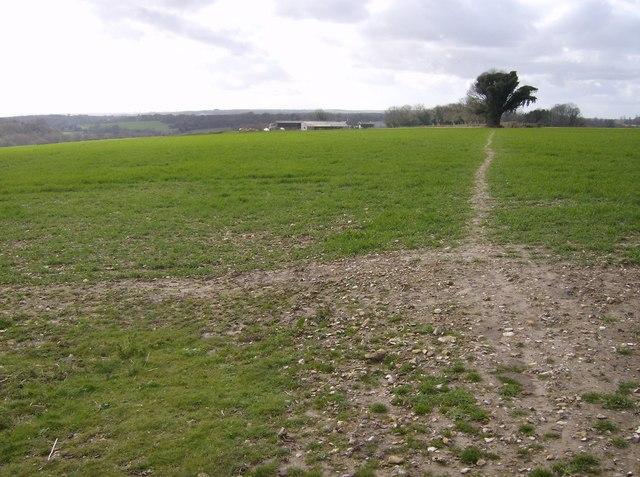 Towards South Holt Farm