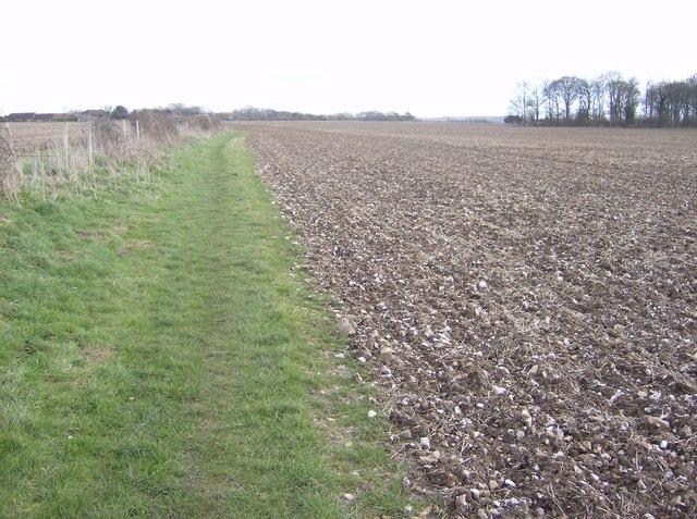 Farmland near Horsley Farm