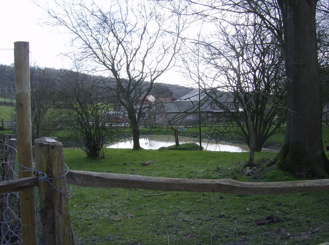 Pond at Cowdown Farm
