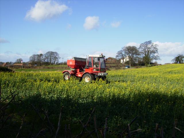 Treating an early rape seed crop near Ousebank Farm