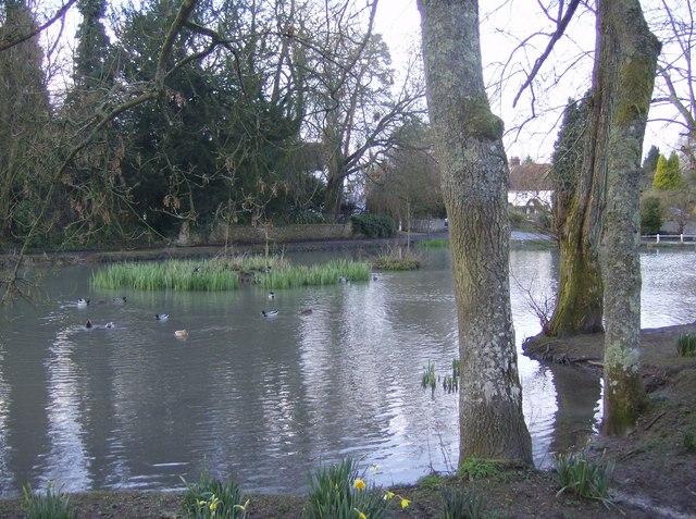 Buriton Pond