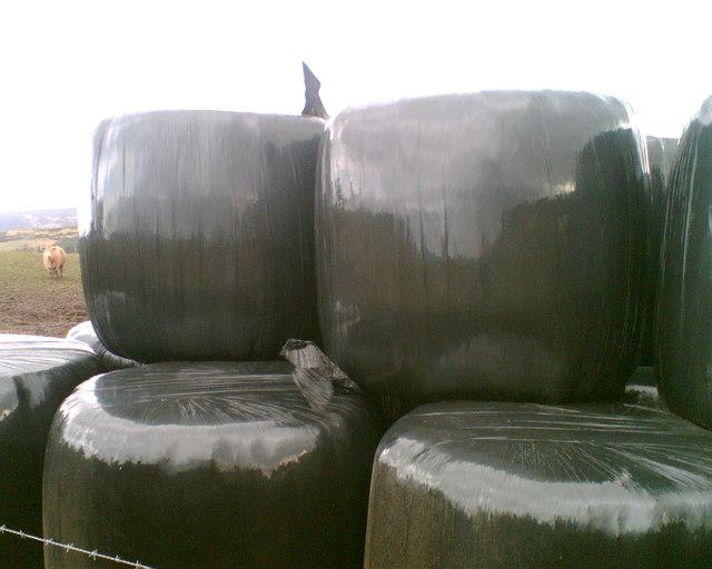 Big black silage bales