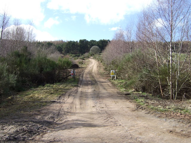 Forestry access