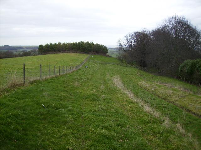 Permissive path in Hovingham Park