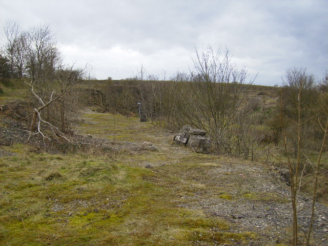 The disused quarry at Wath