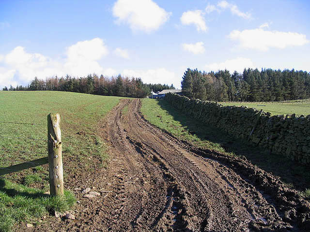 A track leading to Inchkeith Farm