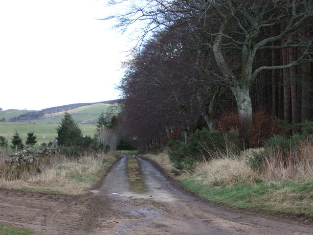 Track to Marywell