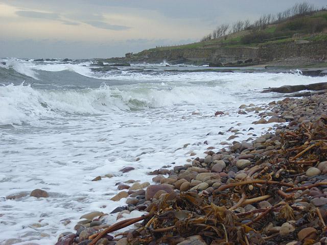 The coast at Crail