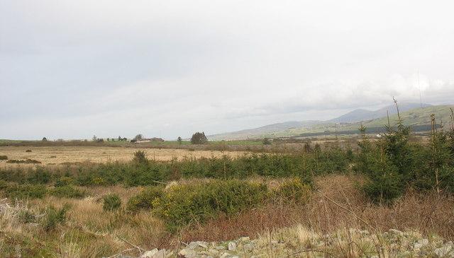 View north towards Cors-y-wlad uchaf