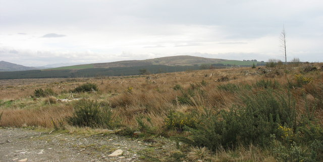 View due south across the Bwlch-derwin forest area