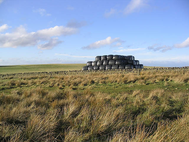 Bales at Scroof Hill