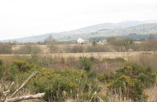 Forest-farmland boundary