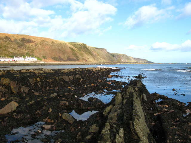 Low tide at Burnmouth Bay