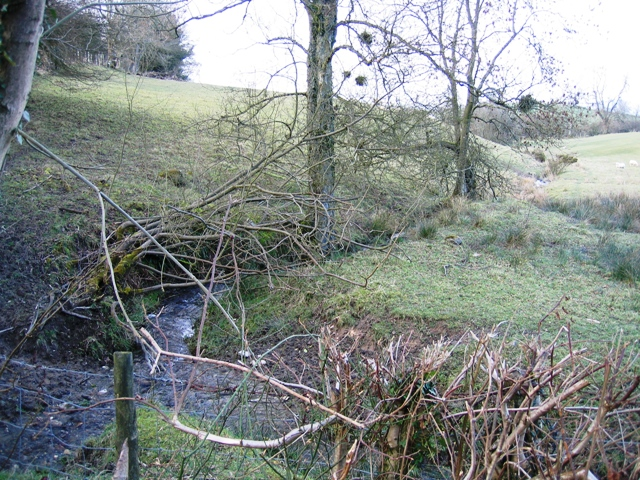 Stream Northeast of Moel Truan