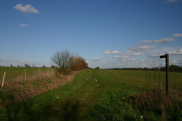 Upper Street Lane, Wattisfield