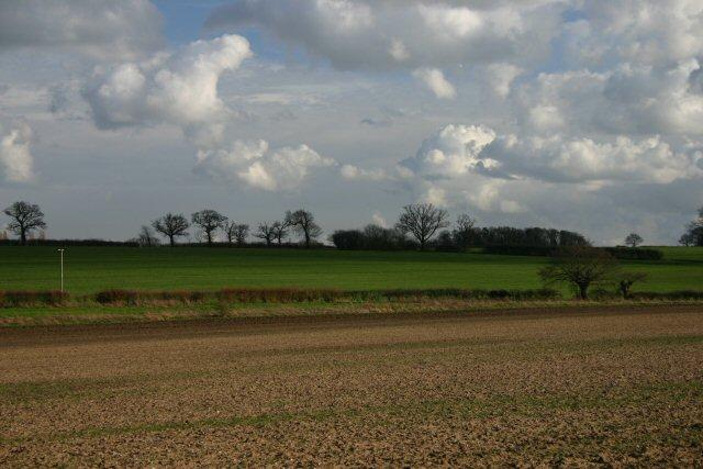 Fields near West Hall