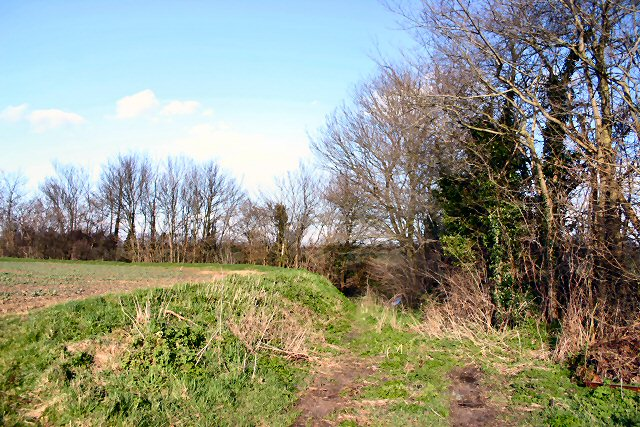 Footpath to Rickinghall
