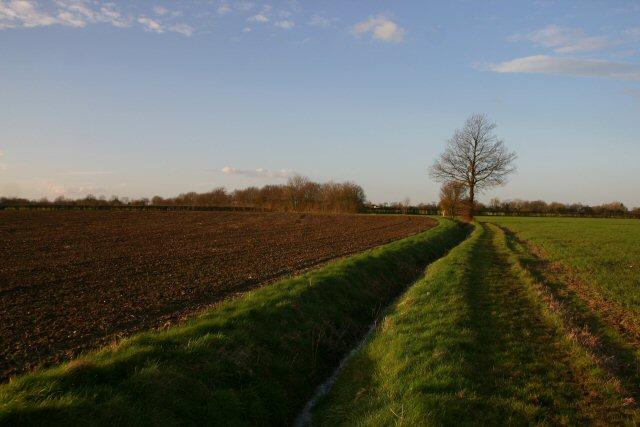 Bridleway at Finningham