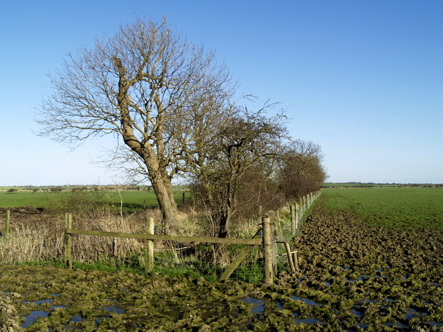 At the end of Carr Lane - footpath to nowhere