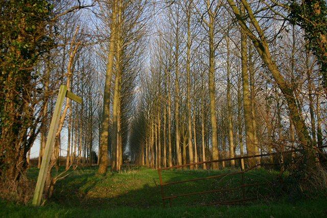 Footpath near Eastlands Farm