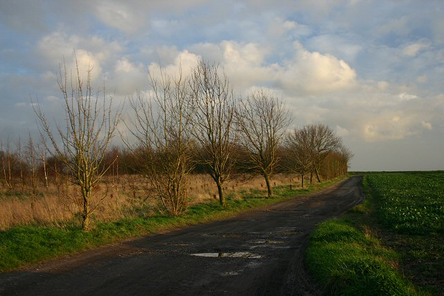 Footpath to Wickham Green
