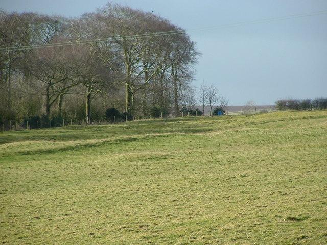 Swaythorpe deserted medieval village