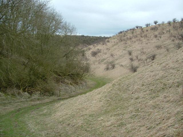 Rural landscape - Dale