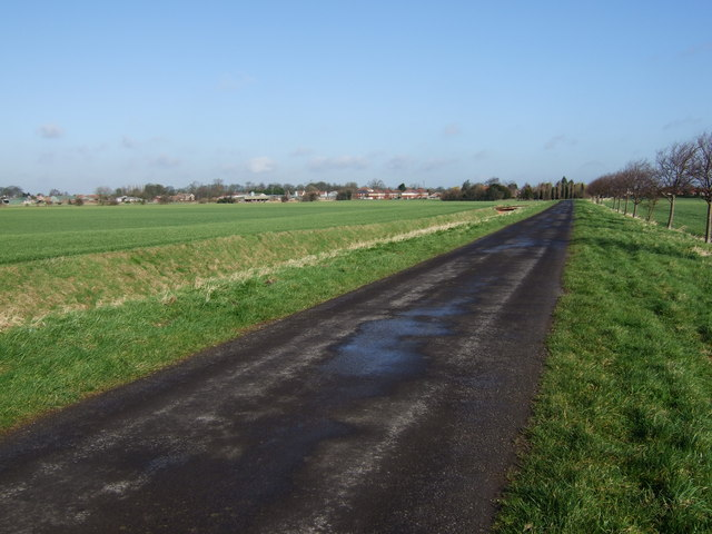 Road and Drain to Reedness