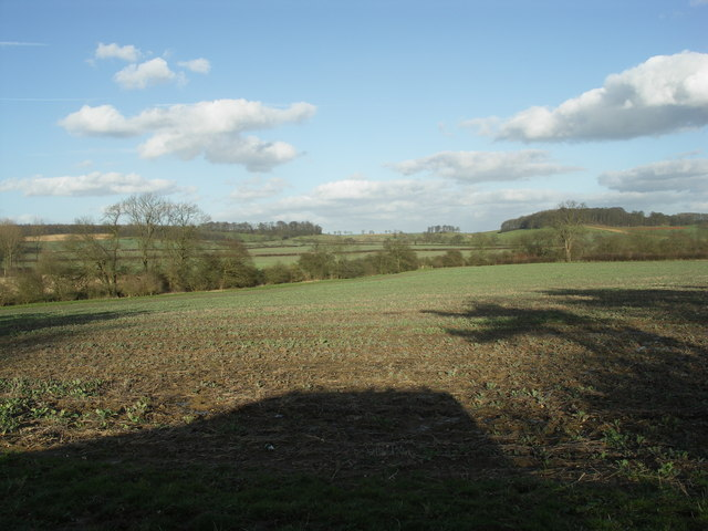 View towards Shutterdown and Mitley Spinneys.