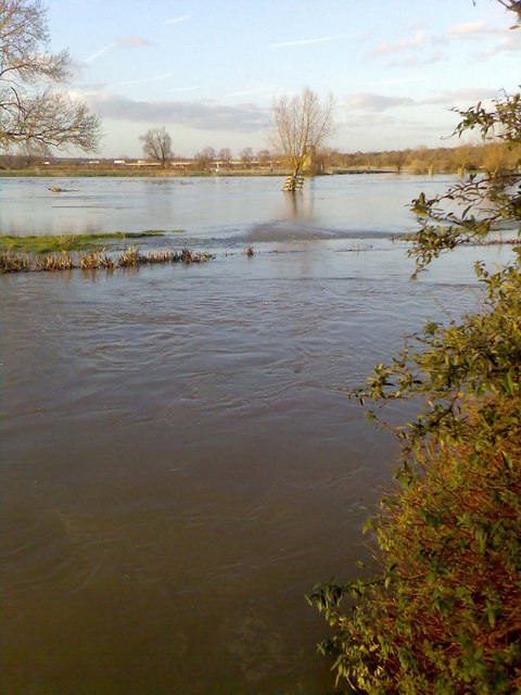 Looking towards Islip, the backwater runs into the river Nene
