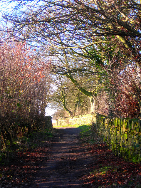 Path from High Lane to Mosborough.