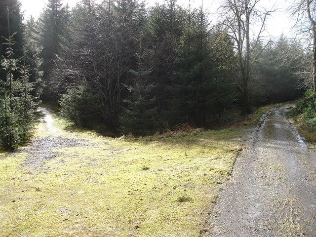 Junction of forestry tracks in Glencruitten Estate southeast of Oban
