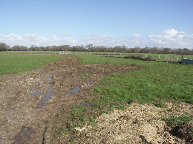 Lea Green Farm Fields