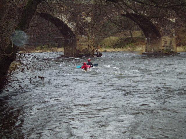 Kayaking on the Tweed at Yair Bridge