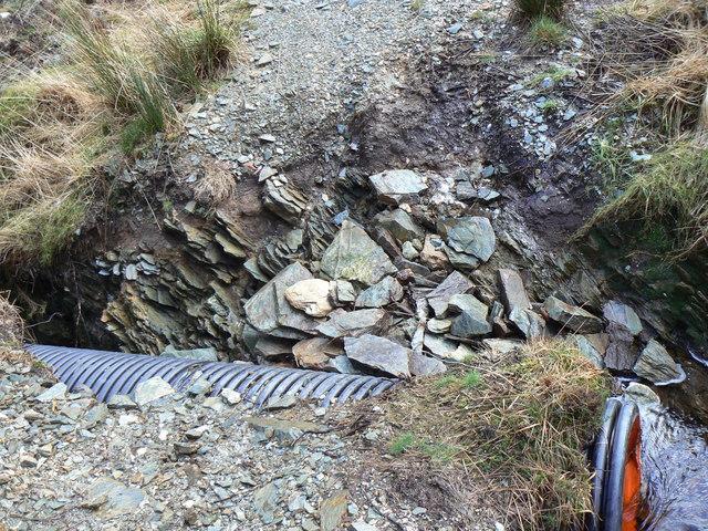 Dunoon- Glenkin Sandbank Track