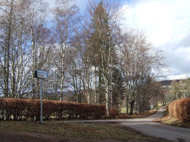 Road to Birkhall and Balnacraig