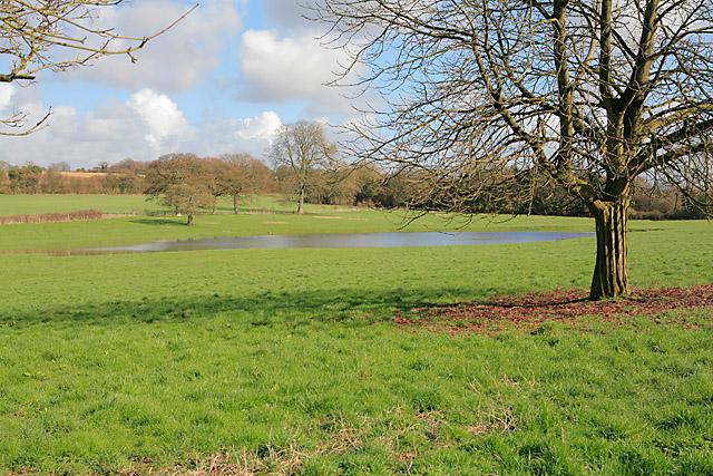 Pond feeding River Itchen at Cheriton