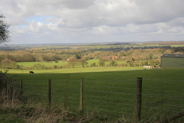 Looking across pasture land towards  West Tisted from Punsholt Lane