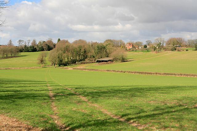 Footpath going towards Hinton Ampner