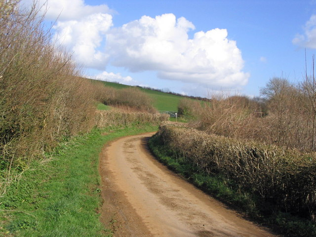 Ridgeback Lane towards South Poorton