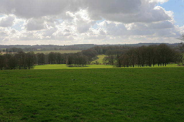 View over pasture and woodland from Hinton Ampner