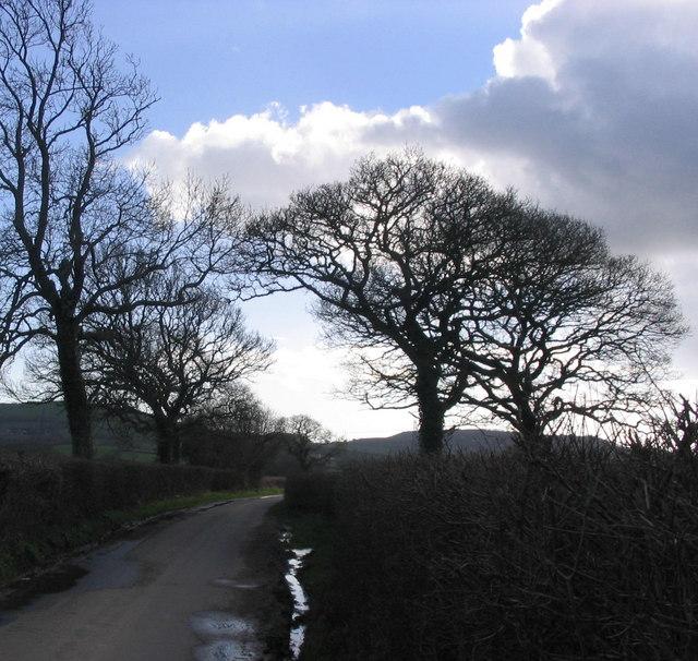 Bluntshay Lane looking south