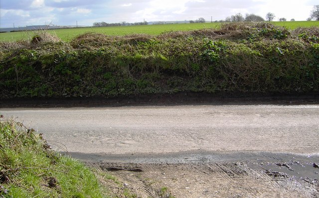 A view across the road to Stibb Green, Wiltshire