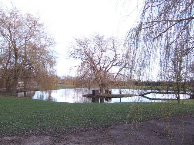 Ornamental pond at Willow Farm