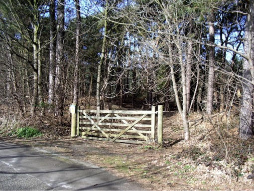 Gate to pinewoods, Formby