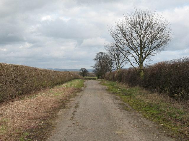 'Retired' Road near Baldersby.